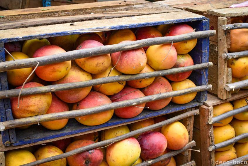 ペルーのマンゴー