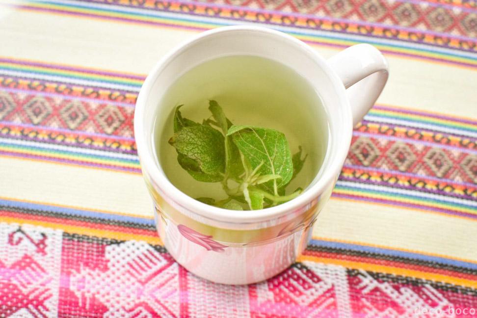 ムーニャのお茶